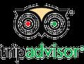 Logo trip advisors