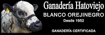 Logo Hato Viejo