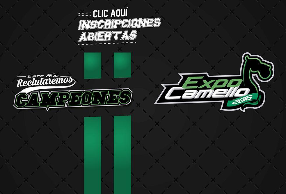 ExpoCamello